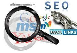 professionnels web seo