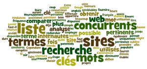 référencement_naturel_mots_clés