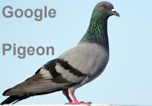 google_pigeon