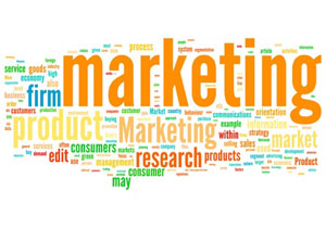 marketing_seo_actu